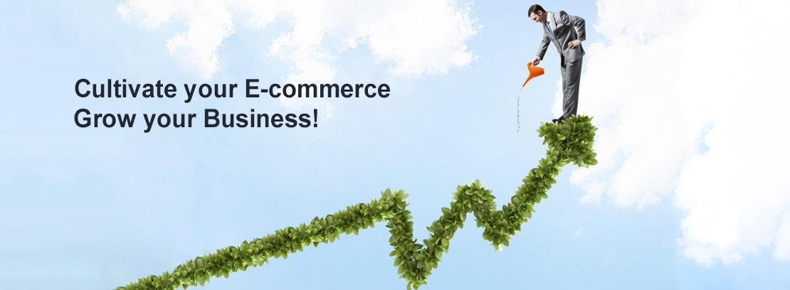 logistics_ecommerce